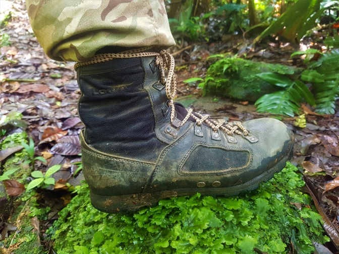 presenting low priced detailed images LOWA Elite Jungle Boots Review – The Field Biologist